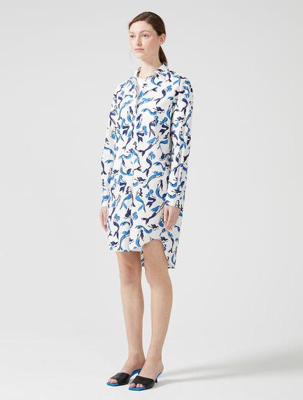 Siren Print Shirtdress